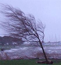 Allerta meteo per pioggia, vento e mareggiate dalle 16 di oggi alle 16 di domani, mercoledì 10
