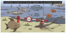 Décodeurs UE: L'Union européenne veut tuer la pêche européenne ! Vraiment ?