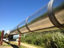 Unione energia: le priorita' degli operatori