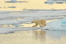 Clima: Ue tira dritto, accordo COP21 sia vincolante