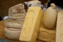 Agricoltura - Commissione Ue adotta prime norme pacchetto latte