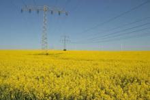 Connecting Europe Facility - secondo bando Energia 2016