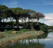 Parchi, riserve e biodiversità, gli impegni e le risorse per il 2019