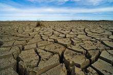 Clima: COP21, impegni da 146 paesi