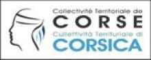Direction de l'action culturelle: Conservateur de la Cinémathèque de Corse