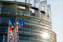 Agricoltura: plenaria, Ue sostenga produttori latte e ortofrutta