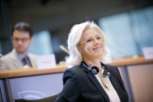Citta': Cretu presenta agenda urbana Ue