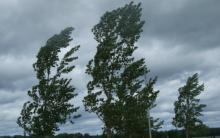 Forte vento, al momento nessun danno rilevante. Allerta arancione fino alle 18, poi 'declassamento' a giallo.